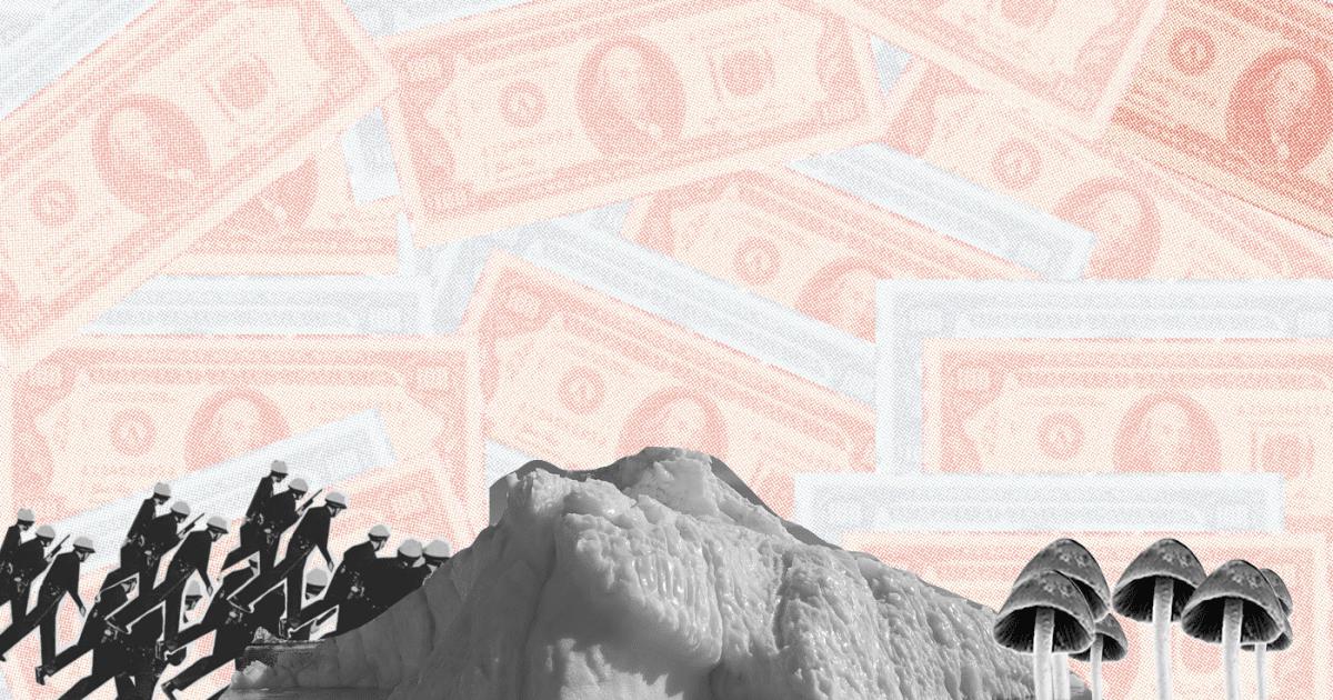 Dollar bills, mountain, soldiers, shrooms