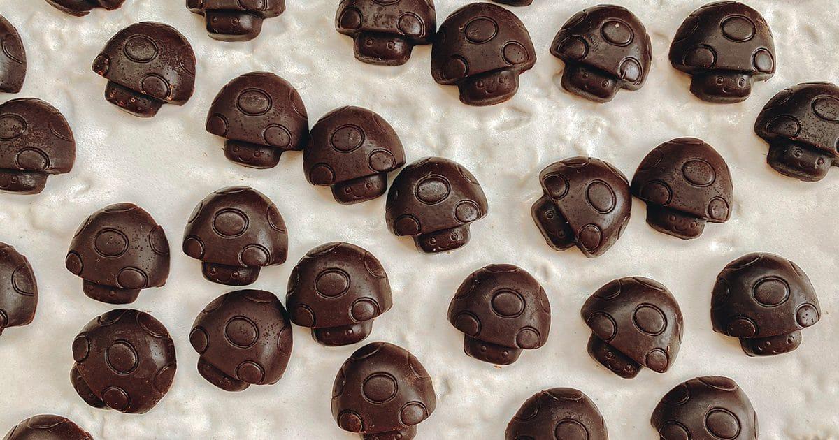 Mushroom Chocolates