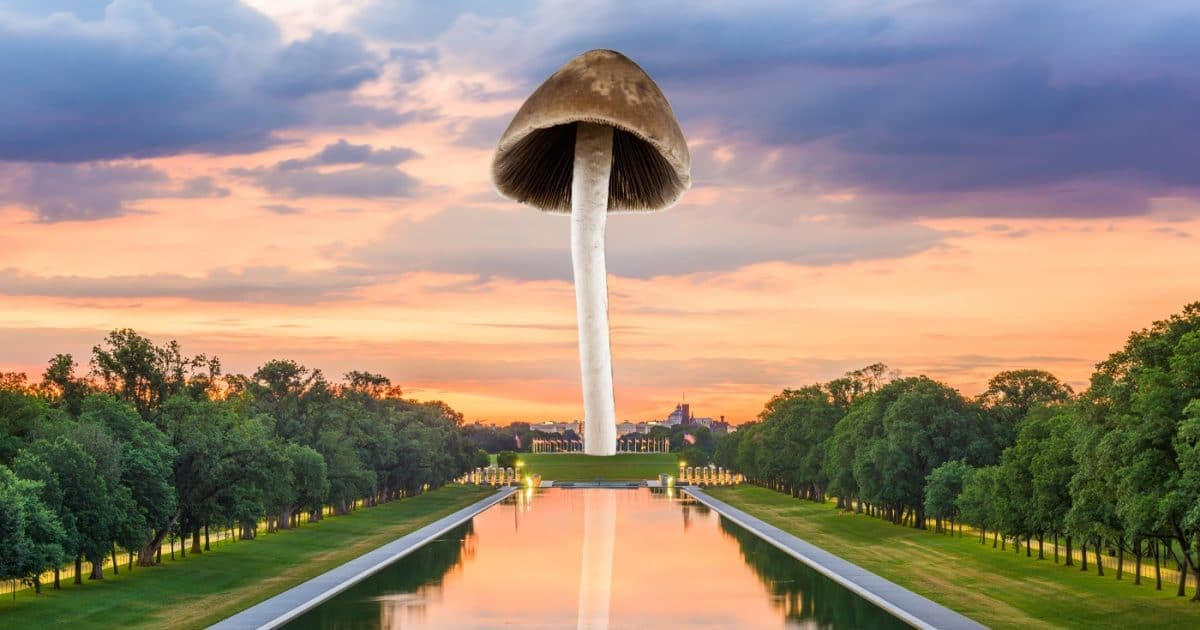 DoubleBlind: Image of psilocybin mushroom over the Washington Monument. In this article, DoubleBlind explores the Decriminalize Nature campaign to decriminalize entheogenic plants and fungi in Washington DC.