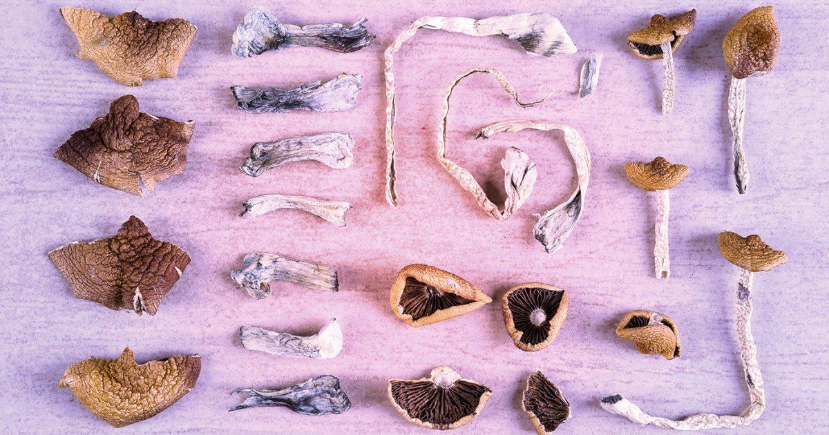 Dried shrooms