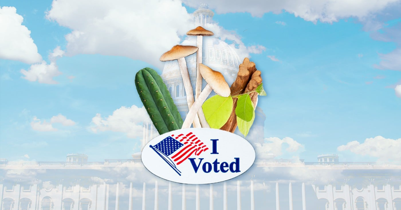 DoubleBlind: Image of voter sticker with San Pedro cactus, psilocybin mushrooms, and ayahuasca. In this article, DoubleBlind explores Washington DC's Decriminalize Nature campaign to decriminalize entheogenic plants and fungi.