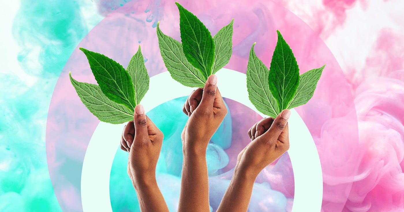 DoubleBlind: Collage of woman's hand holding salvia divinorum leaves. In this article, DoubleBlind explores the legality of the hallucinogen salvia divinorum.