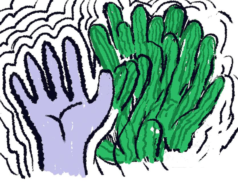 Illustration of purple hand next to san pedro cacti