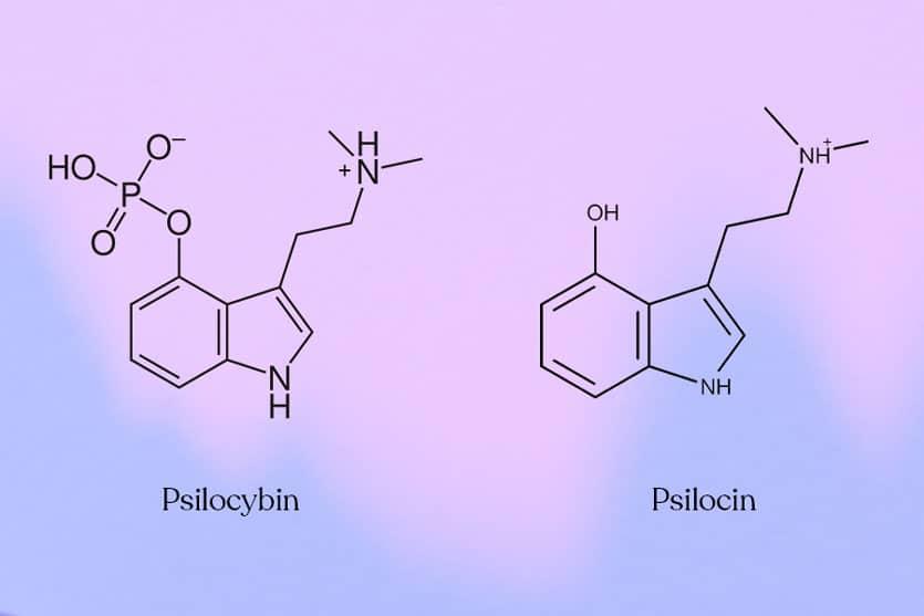 Psilocybin and Psilocin chemical structures