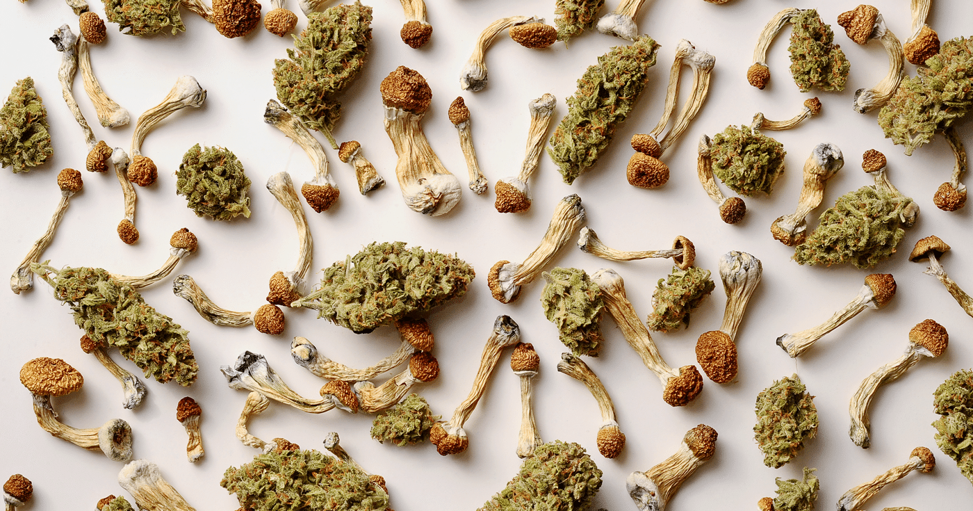 cannabis and shrooms